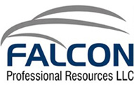Falcon Professional - logo designed by J.David Lopez