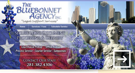 Bluebonnet Agency